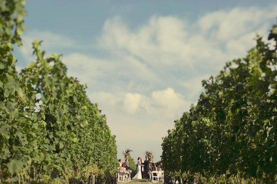 Wedding Picture Of Shinn Estate Farmhouse Mattituck