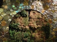 Recycled Tin Can with Wall Garden - Picture of Root Down ...