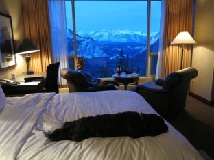 Grandview room, Rimrock Resort, places to see in Banff, Canada