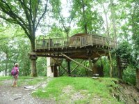 Treehouse - Picture of Living-Room Treehouses, Machynlleth ...