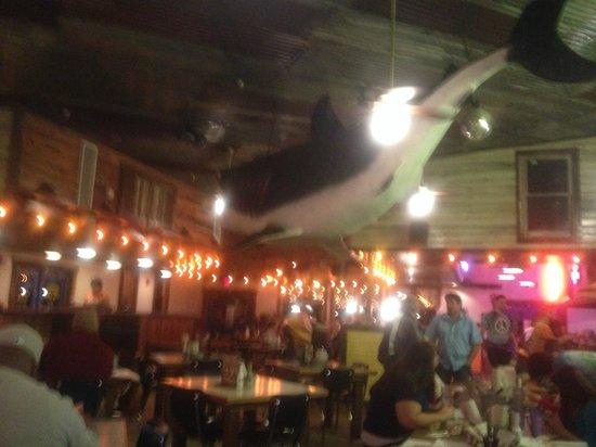 Dinner Restaurants Jacksonville Fl