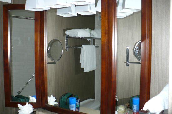 Bathroom Mirrors Tampa bathroom mirrors tampa florida - bathroom design