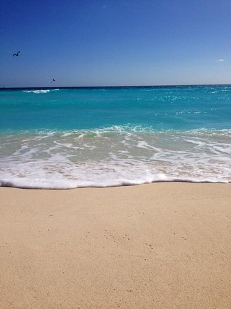 Beautiful Ocean Water and Beach Picture of Iberostar