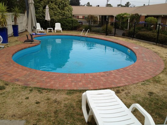 Nice And Clean Pool Picture Of Begonia City Motor Inn
