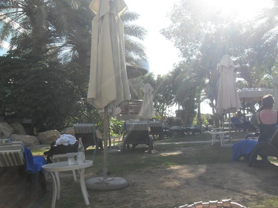 Poolbeach area  Foto di Hilton Dubai Jumeirah Beach Dubai  TripAdvisor