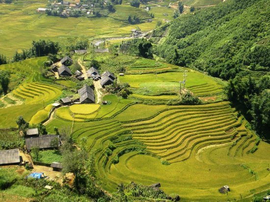 Tan Van Home Stay Review Of Muong Hoa Valley Sapa