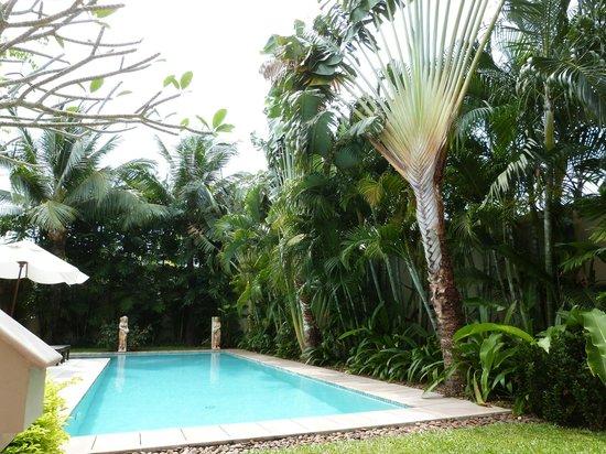 Garten Und Pool Picture Of Bangtao Private Villas Bang Tao