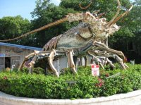 - Picture of El Patio Motel, Key West ...