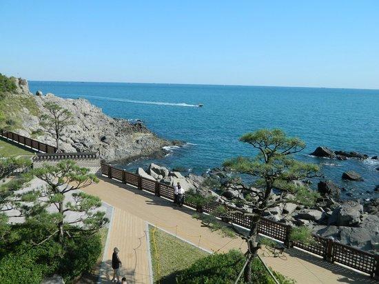 Taman Paling Cantik di Busan