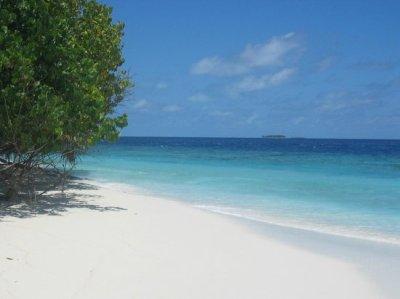 desert island & snorkeling trip - Billede af Cruise ...