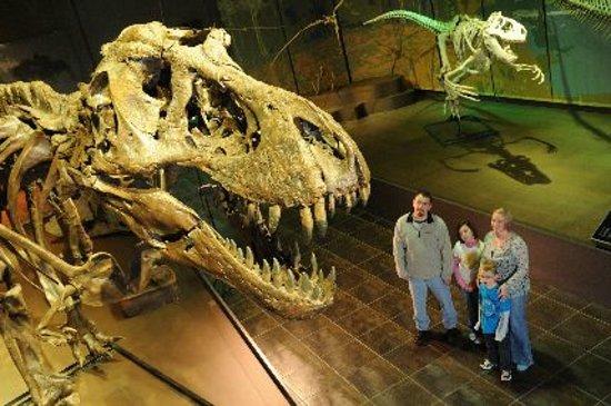 Tellus Science Museum Cost