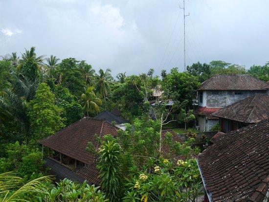 Kajeng Bungalows Desde $ 48485 (ubud, Indonesia