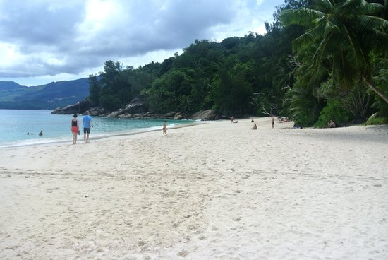 Image result for ANSE SOLEIL BEACH – SEYCHELLES