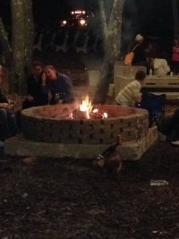 Food trucks and fire pits - Picture of Laurita Winery, New ...
