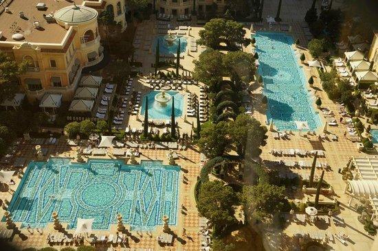 piscina del hotel  Picture of Bellagio Las Vegas Las Vegas  TripAdvisor