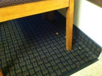 Dried up spaghetti on carpet - Foto di Motel 6 San Diego ...