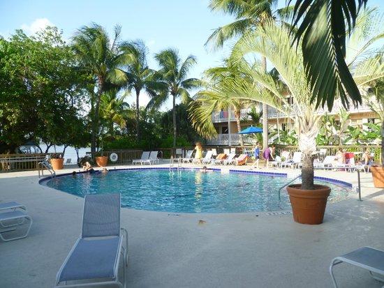 piscina  Picture of Banana Bay Resort  Key West Key West  TripAdvisor