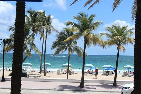 Las Olas Beach Fort Lauderdale FL Top Tips Before You Go  TripAdvisor