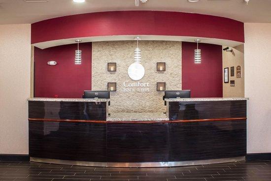 Registration Area Picture Of Comfort Inn Suites Artesia