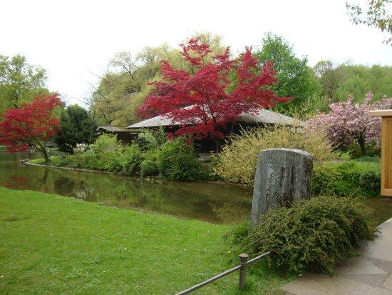 Japanisches Teehaus Bild Von Englischer Garten München