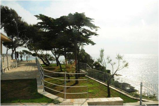 giardino  Picture of Bagno Le Forbici Rosignano