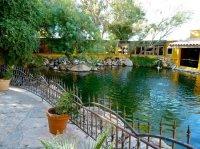 Pond - Picture of El Encanto Mexican Patio Cafe, Cave ...