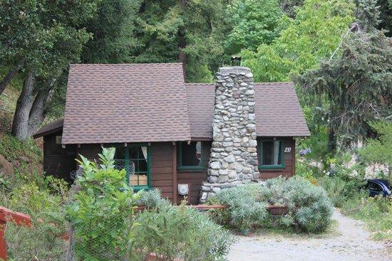 RIPPLEWOOD RESORT Big Sur CA  Hotel Reviews Photos  Price Comparison  TripAdvisor