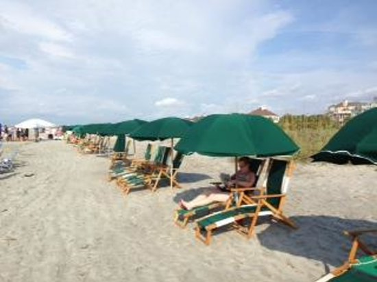 beach chair rental isle of palms fishing hs code the chairs and umbrellas that get blanketing on entire wild dunes resort