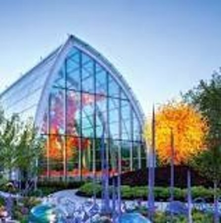 It is amazing for curious children and adults alike to watch seeds in their garden grow and then nurture them into something much larger than the tiny. Chihuly Garden And Glass In Seattle Wa Foto Museum Chihuly Garden Seattle Tripadvisor