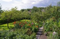Garden in the city - Picture of Hill Close Gardens ...