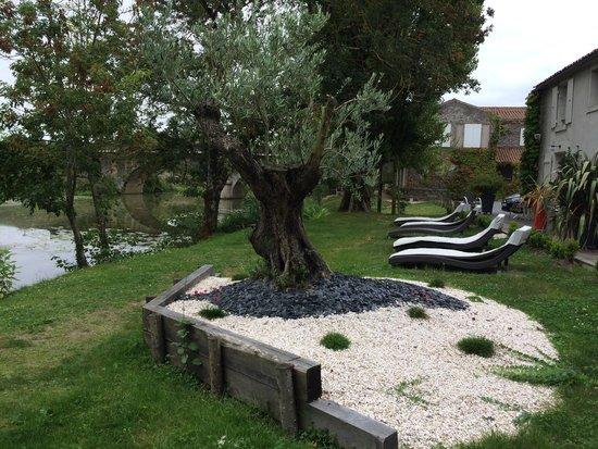 Un trs beau jardin  Picture of Auberge de la Riviere Velluire  TripAdvisor