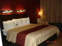 hotel room with king size bed