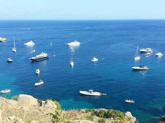 Panoramica Isola Del Giglio Picture Of Fattoria Maremmana