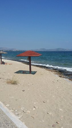 Club Marmara Golden Coast : marmara, golden, coast, Ibiscus, Picture, Golden, Coast, Hotel, Bungalows,, Makri, Tripadvisor