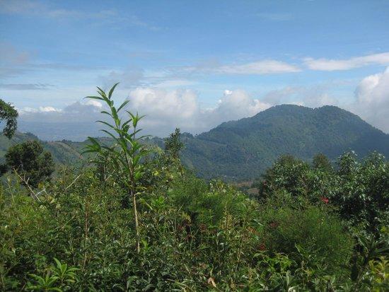 guatemala landscape - of
