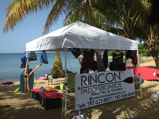 Rincon Paddle Boards All You Need To Know BEFORE You Go