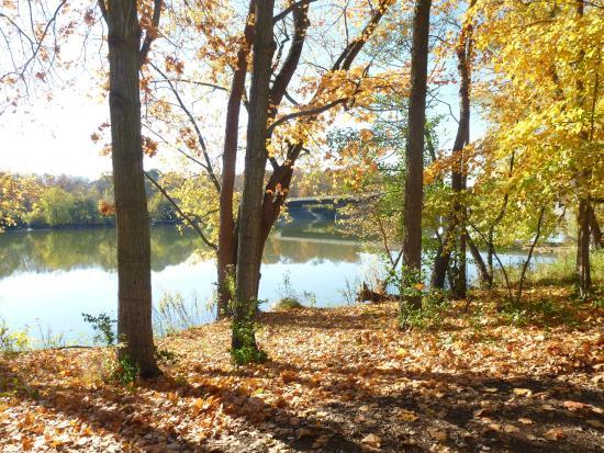 Foto de Farnsworth House Plano Vista do lago em frente a