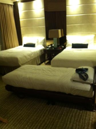 More Spacious With Rollaway In Twin Bedded Picture Of