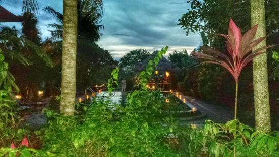 View From Rm1 Picture Of Gayatri Ubud Tripadvisor