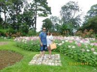 flower garden - Picture of Eden Nature Park, Davao City ...