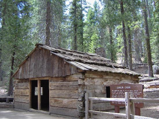 old log cabin  Picture of Giant Forest Sequoia and Kings