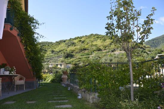 La Casa di Andrea  UPDATED 2017 Prices  Guest house Reviews Monterosso al Mare Cinque Terre