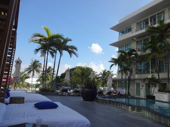 Camastros y piscina  Picture of Hotel Victor Miami Beach