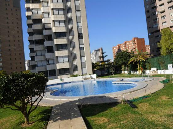 Piscina y jardin  swimmingpool and garden  Picture of San Francisco Apartments Benidorm
