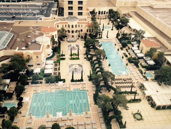 Vegas for Virgins Travel Guide on TripAdvisor