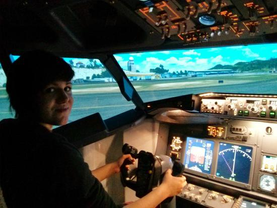 best flight simulator experience