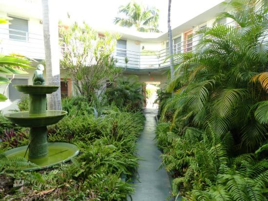 The grounds  rooms  Picture of El Patio Motel Key West  TripAdvisor