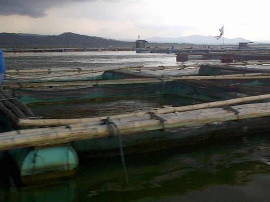 Gambar Plta Wonogiri Berhenti Operasi Waduk Gajah Mungkur