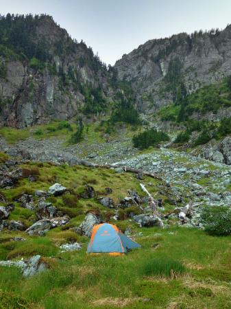 seymour creek campground sits near the banks of seymour creek in a wooded area, providing shade and privacy for campers. Backpacking In Mount Seymour Provincial Park Picture Of Mount Seymour Provincial Park North Vancouver Tripadvisor