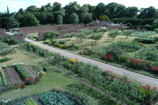 Building Walled Kitchen Garden